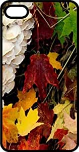 Fall Leaves In Kentucky Black Plastic Case for Apple iPhone 5c