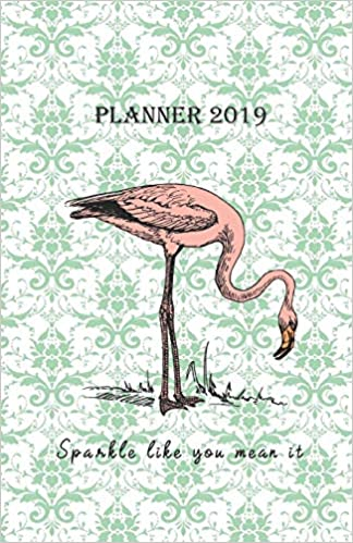 52c9cf8fe367 Planner 2019 Sparkle like you mean it: Vintage Cover Design with a ...