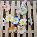 Artificial-Plumeria-Happykiss-100Pcs-Plumeria-Hawaiian-Foam-Frangipani-Artificial-Flower-for-Wedding-Party-Decoration-4Cm-Crafts-FlowersWhite