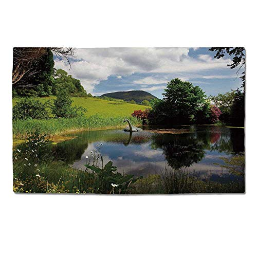 Vw Valley Wash - YOLIYANA Nature Durable Door Mat,Lake by Meadow in a Sunny Day Rural Country Valley Scottish Summertime Landscape for Home Office,One Size
