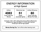 Westinghouse Lighting 7876400 Alloy 42-Inch Gun Metal Indoor Ceiling Fan, Light Kit with Opal Frosted Glass