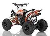125cc ATV 4 Stroke Single Cyclinder Automatic Sport - ATV-120-125 - 125cc 4 Stroke Single Cyclinder By SaferWholesale