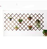 AIDELAI flower rack Solid Wood Grid Wrought Iron Living Room Wall-mounted Flower Wall Wall Balcony Wall Green Hanging Flower Pot Rack Patio Garden Pergolas ( Size : 27585cm )