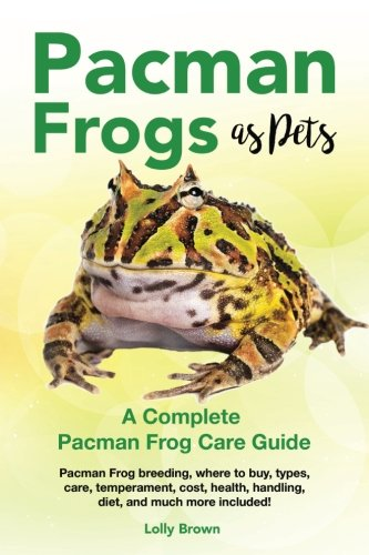 Pacman Frogs as Pets: Pacman Frog breeding, where to for sale  Delivered anywhere in USA