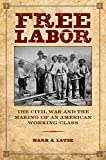 Free Labor: The Civil War and the Making of an American Working Class (Working Class in American History)