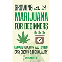 Growing Marijuana for Beginners: Cannabis Growguide - From Seed to Weed