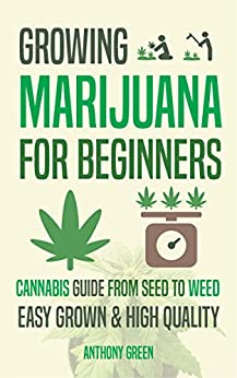 how to grow weed for beginners