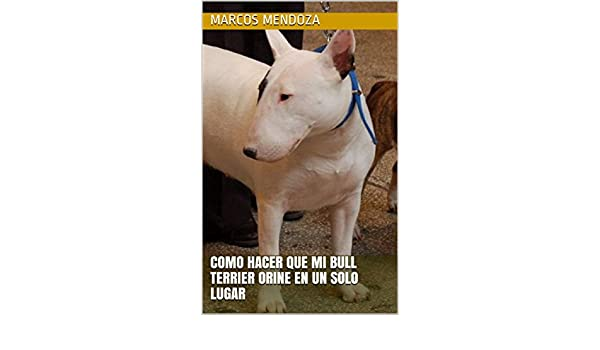 Como Hacer que Mi Bull Terrier Orine en un Solo Lugar (Spanish Edition) - Kindle edition by Marcos Mendoza. Crafts, Hobbies & Home Kindle eBooks ...