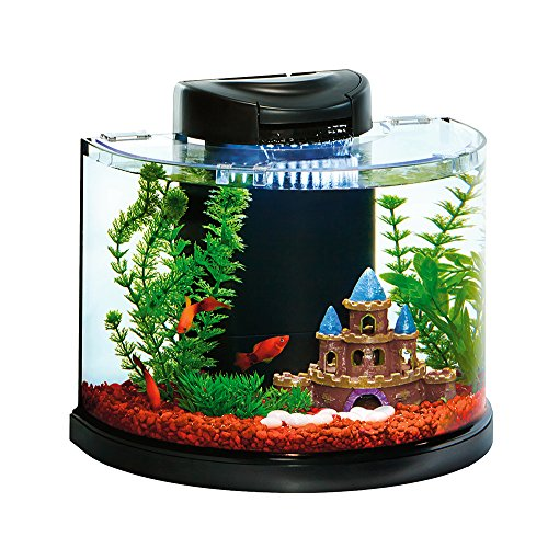 Elive aquaduo 3 gallon betta aquarium fish tank kit led for Betta fish tanks amazon