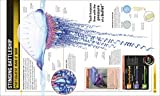 Super Shark Encyclopedia: And Other Creatures of