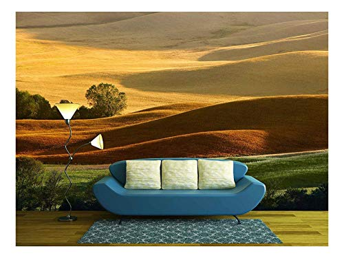 wall26 - Countryside Landscape in Tuscany Region of