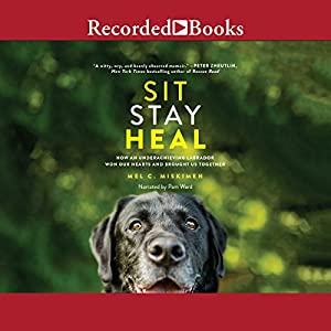 Sit Stay Heal Audiobook