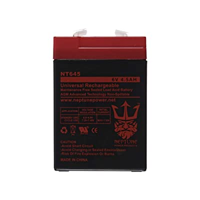 6V 4.5AH Battery for Kid Trax Disney Ride On Toy KT1123TR by Neptune: Automotive
