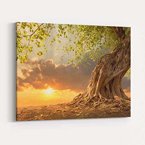 Rosenberry Rooms Canvas Wall Art Prints - Beautiful Scence o