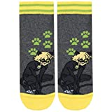 Miraculous Ladybug Boys' Cat Noir Socks Pack of 3