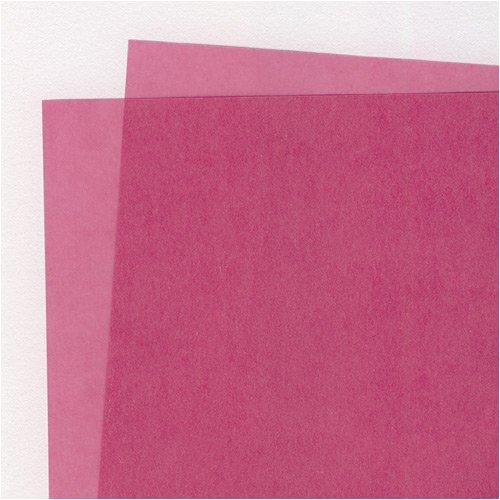 Translucent Colored Vellum- Blush 19x25 Inch