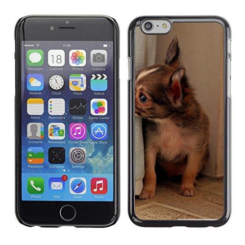 "Premio Sottile Slim Cassa Custodia Case Cover Shell // V00003609 longue Chiuaua cheveux // Apple iPhone 6 6S 6G 4.7"""