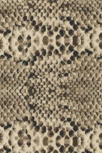 Snake Skin: Graph Paper Notebook, 6x9 Inch, 120 pages ()