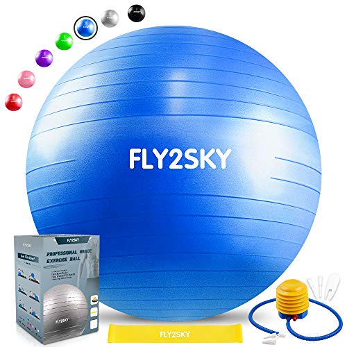 FLY2SKY Exercise Ball Fitness Stability Ball Workout Yoga Ball Chairs for Office Home (forty five-75cm, 7-Shade) Anti-Burst & Non-Slip Gym Ball for Therapy Pilates Birth (Resistance Loop & Quick Pump) – DiZiSports Store