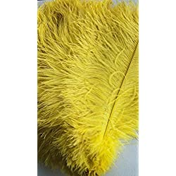 AWAYTR Natural 20-22 inch(50-55cm) Ostrich Feathers Plume for Wedding Centerpieces Home Decoration Yellow 10Pcs