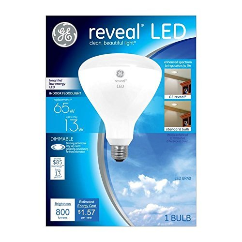 Reveal 65 Watt Flood Light in US - 8