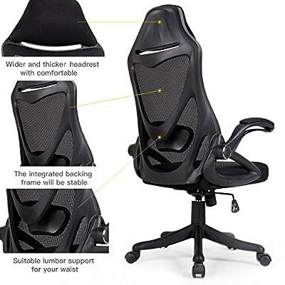 Zenith High Back Mesh Office Chair with Adjustable Armrest Lumbar Support Headrest Swivel Task Desk Chair Computer Chair