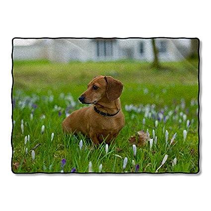 Manta de forro polar personalizado de perro salchicha perro personalizado manta rey Reina 50 x 60