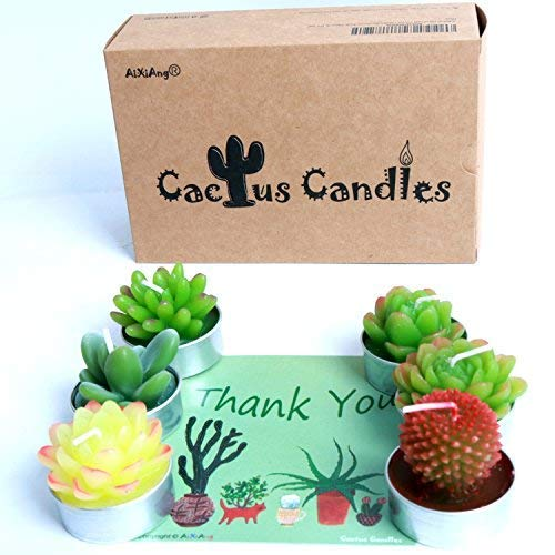 AiXiAng Handmade Delicate Cactus Candles for Home Decorative Cactus Candles Tea Light Candles Home Decor Gift Decoration Home Decor Colorfull Succulent Candles Happy New Year Gifts