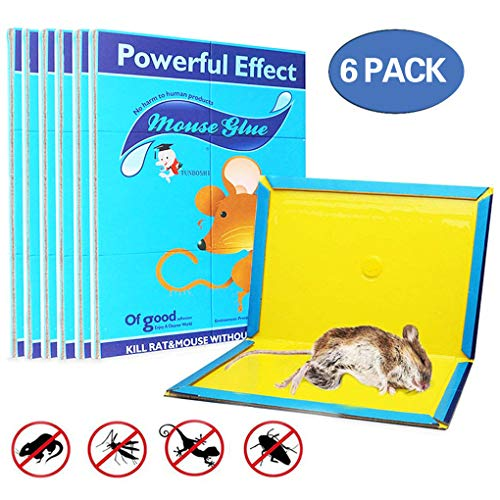 Mouse Glue Trap, Rat Glue Traps, Glue Traps mice, Super Sticky & Extra Large, Best Peanut Butter Scented Mouse Traps Glue Board Mice & Rodent &Pests & Bug & Ant & Spider - 6 Pack
