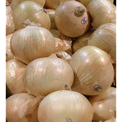 Sweet Granex Onion 80 Seeds as Grown in Maui Hawaii: Toys & Games