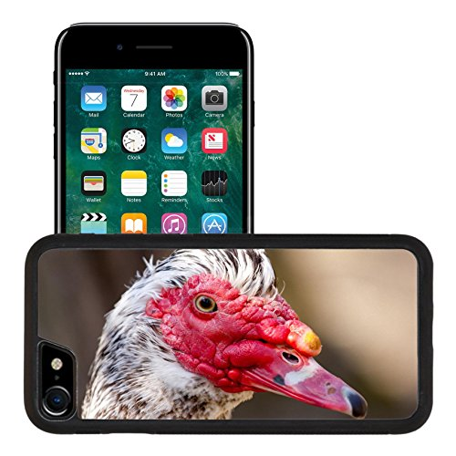 Luxlady Premium Apple iPhone 7 Aluminum Backplate Bumper Snap Case iPhone7 IMAGE ID: 39080454 Portrait of muscovy (Duck Premium Coat)