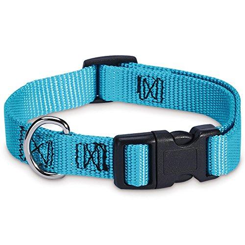 "Guardian Gear Nylon Adjustable Dog Collar, Fits Necks 6"" to 10"", Malibu Blue"
