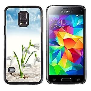 A-type Arte & diseño plástico duro Fundas Cover Cubre Hard Case Cover para Samsung Galaxy S5 Mini (Not S5), SM-G800 (Blanco Primavera Flores)