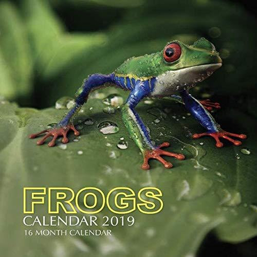 Frogs Calendar 2019: 16 Month - Frog Calendar