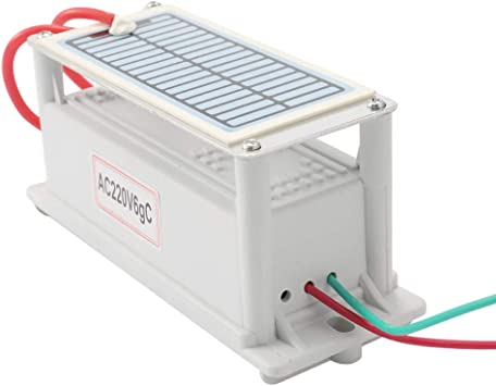 Fesjoy Generador de Ozono de Cerámica Portátil 220V 6g Larga Vida ...