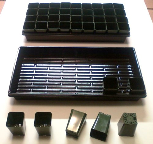 432 Rose Pots + 12 Solid Bottom 1020 Trays - 2 1/4'' Square x 3 1/4'' Deep Pots by AAAmercantile (Image #1)