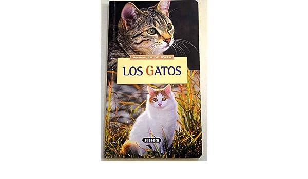 Los gatos (Spanish)