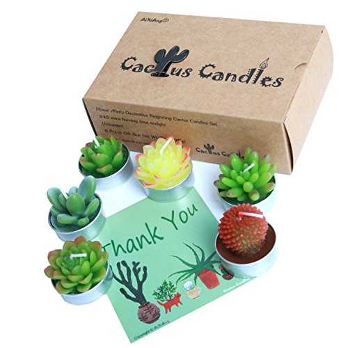 Cactus Tealight Candles, AiXiAng Handmade Delicate Succulent Cactus Candles for Birthday Party Wedding Spa Home Decoration, 6 Pcs in Gift Box (Tealight Candle Box)