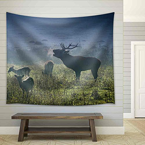 Deer with Herd Roaring on the Meadow at Sunrise Fabric Wall Tapestry