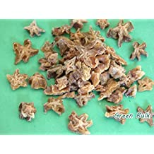 Tropical Series- Dried Star Fruit, 2.2 lb