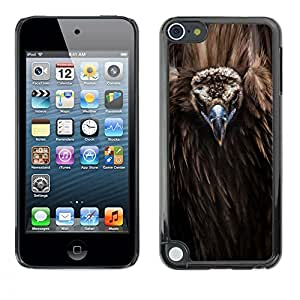 FlareStar Colour Printing Bird Beak Feathers Nature Animal Condor cáscara Funda Case Caso de plástico para Apple iPod Touch 5