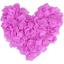 AbbyLexi 500 Pcs Artificial Silk Rose Petals for Wedding Decoration, Purple