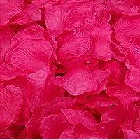 Magik - 1000~ 5000pezzi di petali di rosa in seta, adatti come decorazione per la tavola in occasione di feste e matrimoni, varie opzioni disponibili