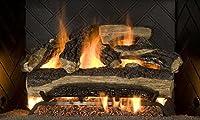 Sure Heat MO24DBNL-60 Vented Gas Firepla...