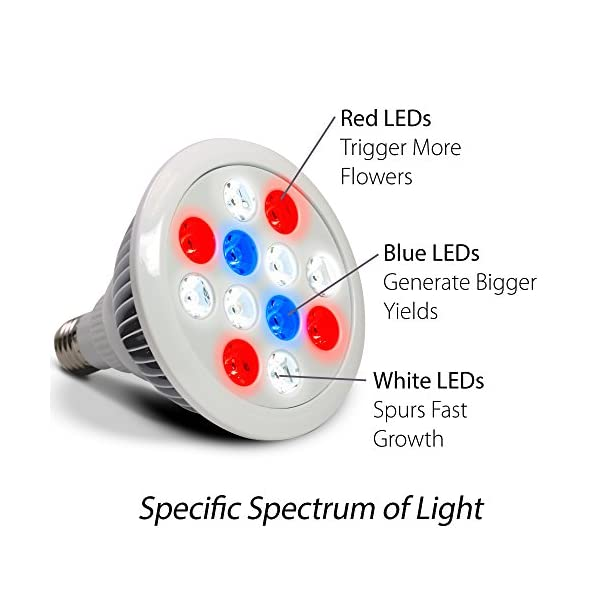 AeroGarden-LED-Grow-Light-12w