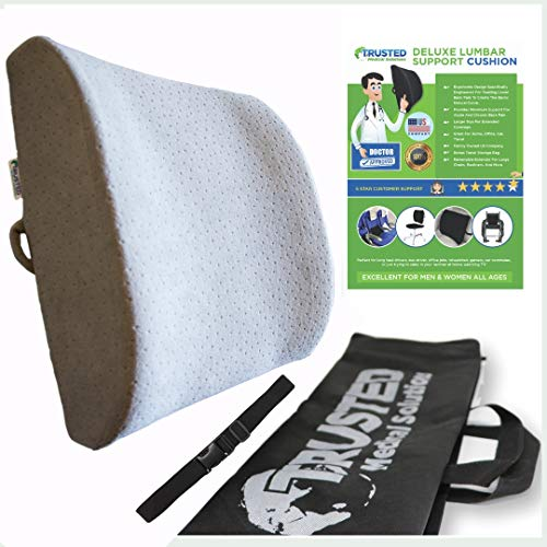 Trusted XL Back Lumbar Support Pillow Wont Flatten 100% Pure Memory Foam - Posture Cushion Pain Relief for Office, Car, Home, Travel - Removable Attach Anywhere Extendable Straps (Gray)