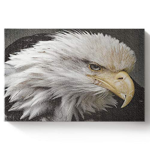 - Arts Language DIY Oil Paintings Paint by Numbers Kit with Brushes for Adults/Kids Beginner White-Headed Eagle Bird in Wildlife Acrylic Paints on Canvas Wooden Framed Wall Art 16x20in