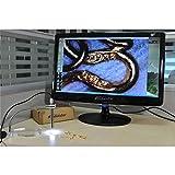 500X 8LED 2MP Digital USB Microscope Otoscope PCB Inspection Camera Endoscope Loupe Webcam