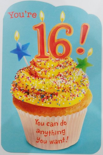 Sensational Youre 16 You Can Do Anything You Want Funny Humor Happy 16Th Personalised Birthday Cards Epsylily Jamesorg