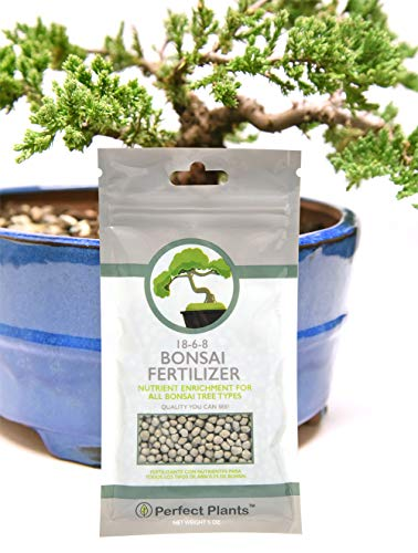 Bonsai Fertilizer Pellets by Perfect Plants - 5 Year Supply - All Natural Slow Release - Immediate Enrichment for All Live Bonsai Trees